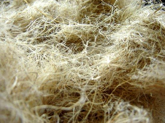 Decorticated hemp fibre